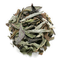 MINT WHITE TEA
